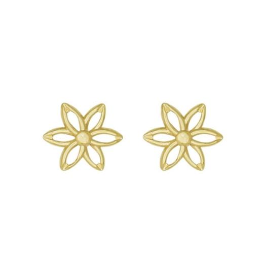 Cercei placati cu aur 18 K, 2 microni, productie Brazilia  - 6896O87